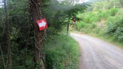 Trail Fonts del Montseny (7)