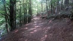 Trail Fonts del Montseny (73)