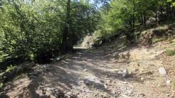 Trail Fonts del Montseny (74)