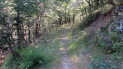 Trail Fonts del Montseny (78)