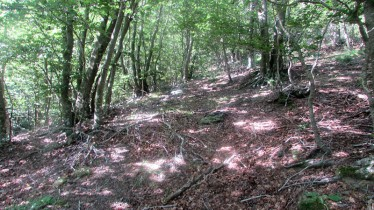 Trail Fonts del Montseny (79)