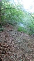 Trail Fonts del Montseny (82)