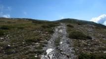 Trail Fonts del Montseny (95)