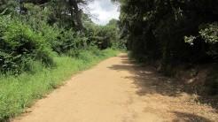 Trail La Floresta (10)
