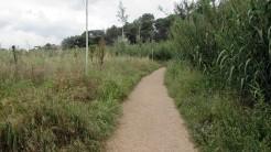 Trail La Floresta (17)