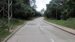 Trail La Floresta (2)