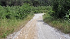 Trail La Floresta (4)