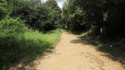 Trail La Floresta (8)