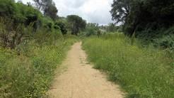 Trail La Floresta (96)
