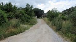 Trail La Floresta (97)