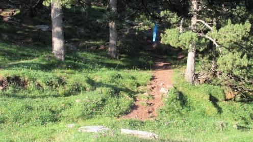 Trail Moixeró 2018 (2)