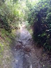 Marató Collserola A (18)