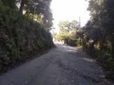 Marató Collserola D (3)