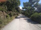 Marató Collserola D (5)