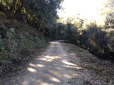 Marato Collserola C (74)