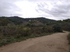Bada Trail (21)
