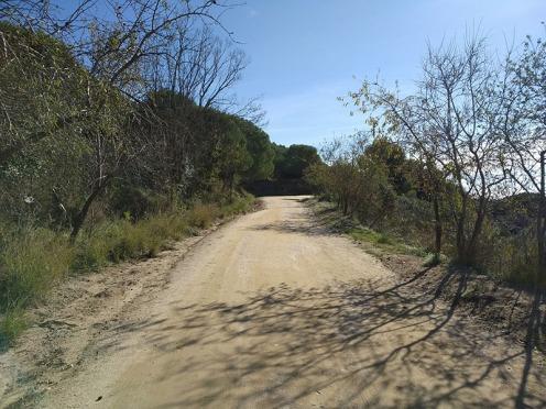 Bada Trail (36)