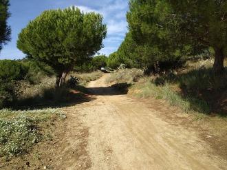 Bada Trail (37)