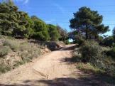 Bada Trail (38)