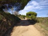 Bada Trail (41)