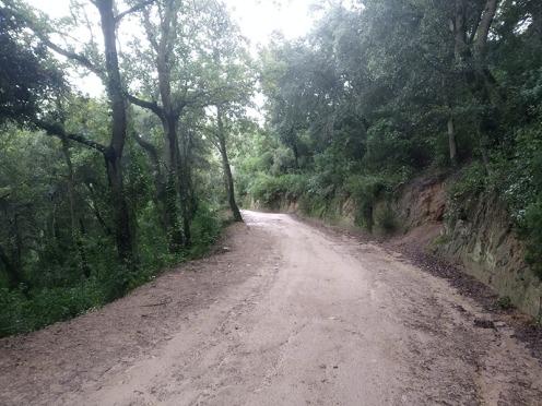 Bada trail (56)