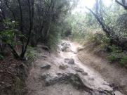 Bada trail (58)