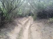 Bada trail (59)