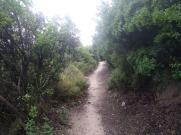 Bada trail (60)