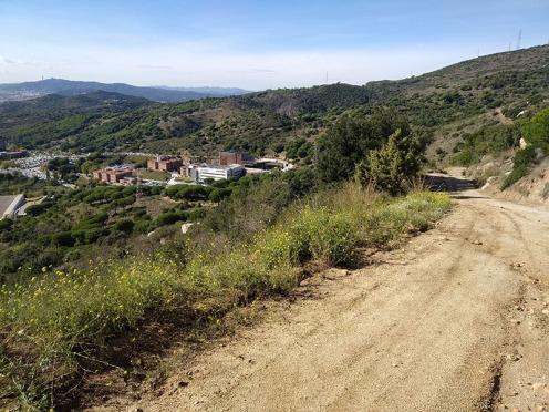 Bada Trail (71)