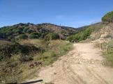 Bada Trail (75)