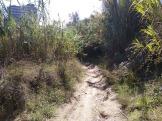 Bada Trail (77)