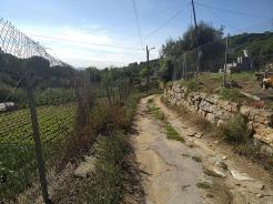 Bada Trail (78)