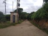 Bada trail (91)