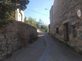 Bada Trail (95)