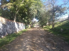 Bada Trail (98)