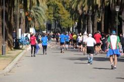 Maratón Sevilla (96)