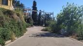 Midnight Trail (2)