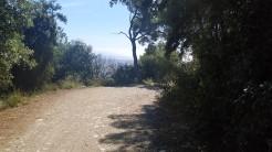 Midnight Trail (23)