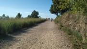 Midnight Trail (36)