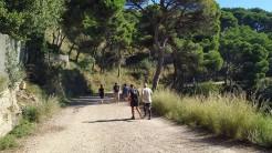Midnight Trail (38)