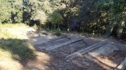 Midnight Trail (49)