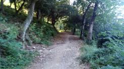 Midnight Trail (53)