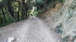 Midnight Trail (54)