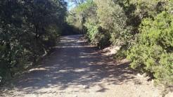 Midnight Trail (59)