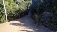 Midnight Trail (64)