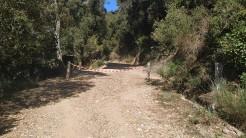 Midnight Trail (65)