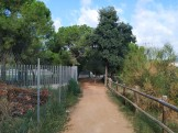 Sant Ramon a Sac (5)