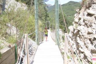 Trail Moixeró 39k Últims metres (197)