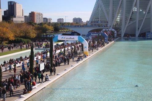 Maraton Valencia 2019 (1127)