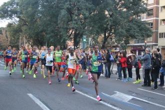 Maraton Valencia 2019 (8)